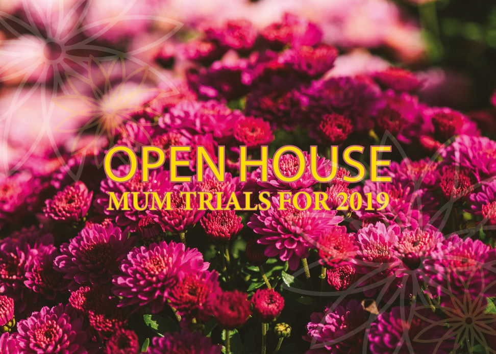 Open house September dates