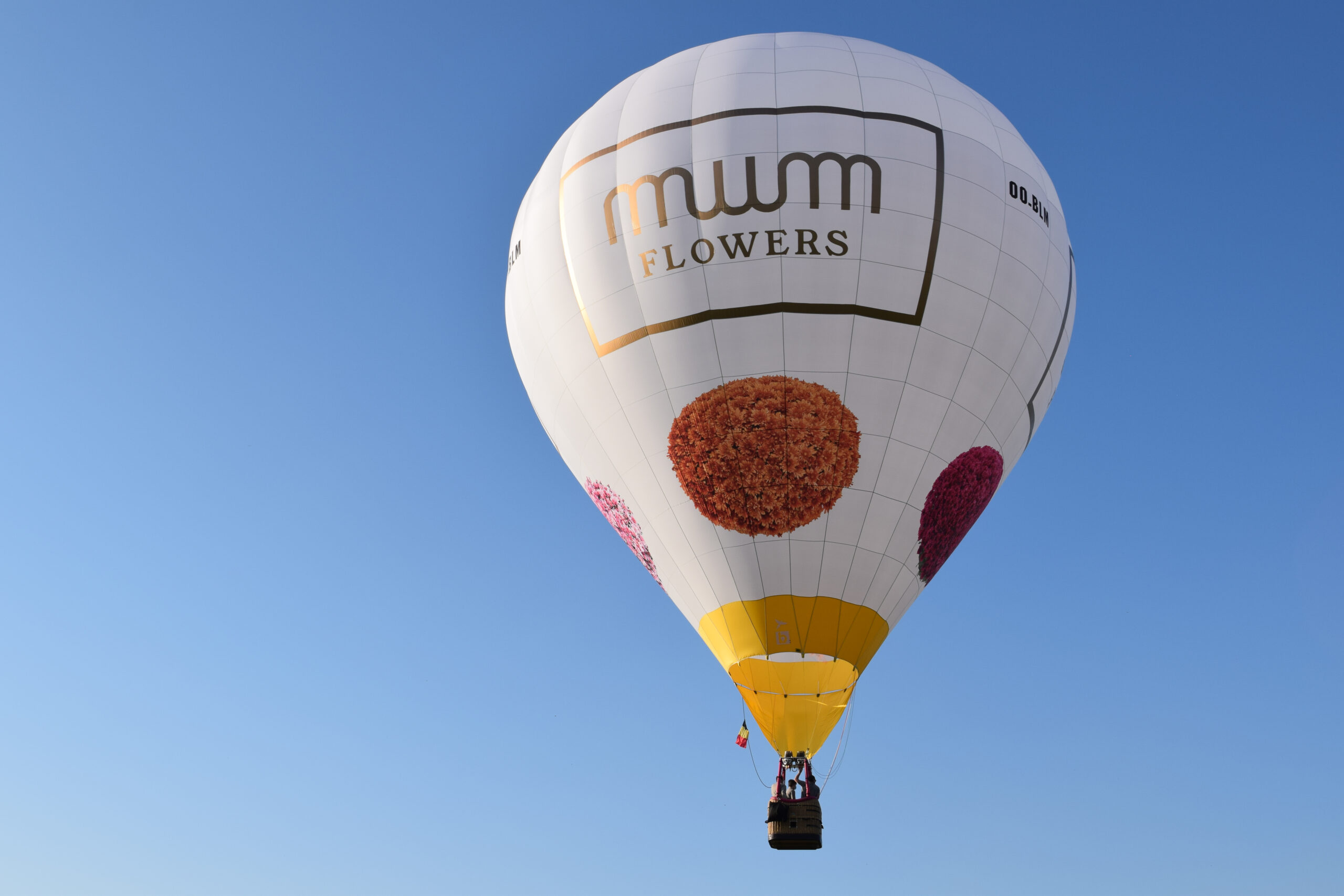 Up up and away in the Mum Flowers hot air balloon, a heavenly experience